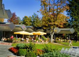 Park mit Cafe 2